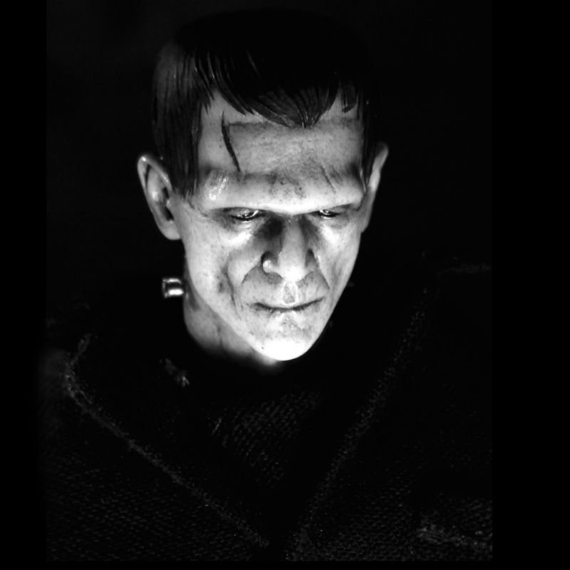 "frankensteins monster from misunderstood creature to How frankenstein's monster became human  ""the component parts of a creature might be manufactured  frankenstein is perhaps the most famous and."